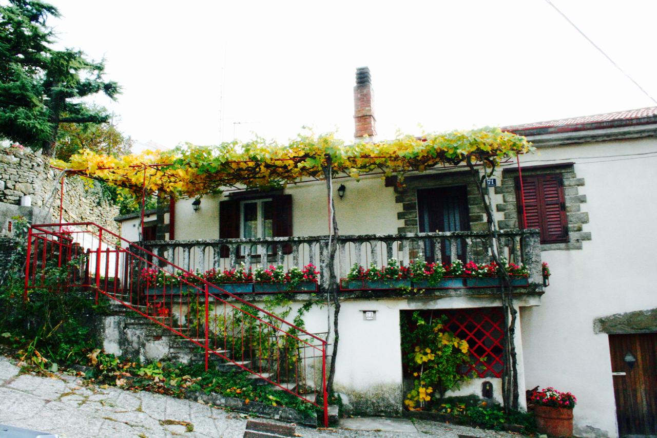 autunno-e-sapori-del-carso-8